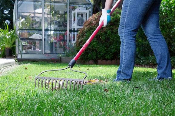 Rsa services aberdeen general garden maintenance for General garden services